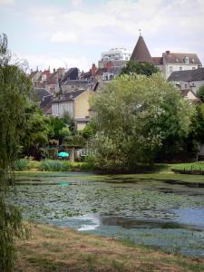 Châteauroux - Banks of the River Indre and rooftops of the town (Indre valley)