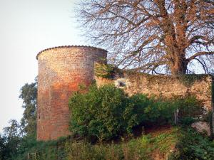 Châtillon-sur-Chalaronne - Tower of the old castle and tree with autumn colors