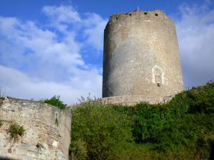 Châtillon-sur-Indre - César tower (keep)