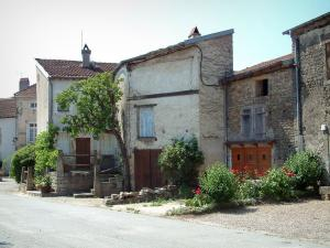 Châtillon-sur-Saône - Houses, tree, plants and flowers of the fortified village