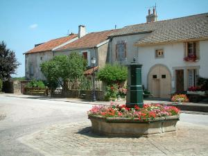 Châtillon-sur-Saône - Fountain decorated with flowers, trees and houses