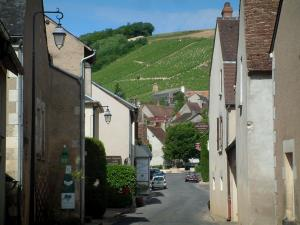 Chavignol - Houses in the wine growers' village and hill covered with vines in background