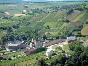 Chavignol - General view of the church and the houses in the village as well as of the hills covered with vines