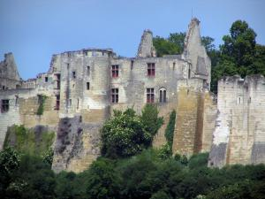 Chinon - Castle (medieval fortress)