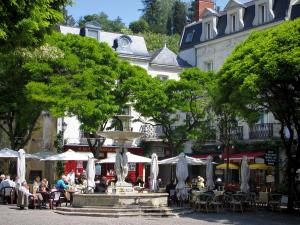 Chinon - Square featuring a fountain, restaurant terraces, trees and houses