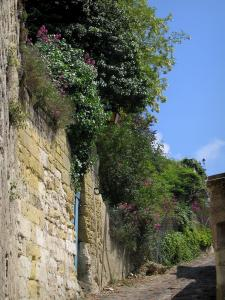 Chinon - Ascent leading to the castle