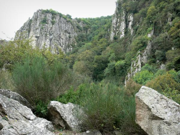 Chouvigny gorges - Sioule gorges: rocks, vegetation and rock faces (cliffs)