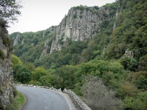 Chouvigny gorges - Sioule Gorges: Gorges road, trees and rock faces (cliffs)