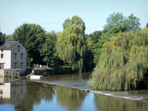 Civray - Charente river, trees along the water