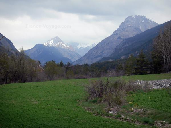 Clarée valley - Meadow, shrubs, trees and mountains