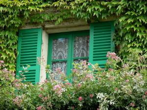 Claude Monet's house and gardens - Monet's house, in Giverny: window with green shutters, vine and flowers