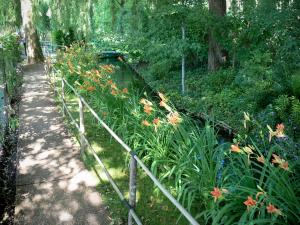 Claude Monet's house and gardens - Monet's garden, in Giverny: water garden: alley, orange lilies, small stream and trees