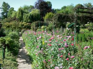 Claude Monet's house and gardens - Monet's garden, in Giverny: Norman enclosure: small path lined with flower beds