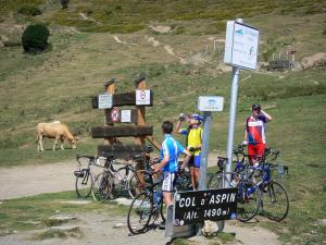 Col d'Aspin pass - Cyclists pausing at the Col d'Aspin mountain pass (in the Pyrenees), sign indicating the altitude of the pass (1490 meters), cow and pastures in the background