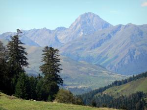 Col d'Aspin pass - From the pass, view of the surrounding trees and Pyrenees mountains