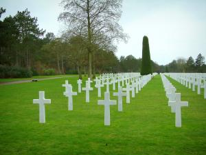 Colleville-sur-Mer American cemetery - Tombs of the American military cemetery and trees