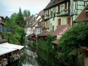Colmar - Petite Venise (Little Venice): Lauch river and half-timbered houses and colourful facades, trees and a café terrace
