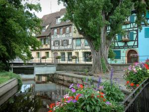 Colmar - Petite Venise (Little Venice): flower-covered bridge spanning the River Lauch and half-timbered houses and colourful facades