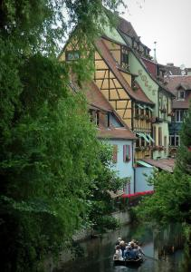 Colmar - Petite Venise (Little Venice): trees, half-timbered houses and colourful facades by the River Lauch and boat stroll on the canal