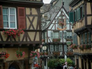 Colmar - Timber-framed houses, geranium flowers and pretty forged iron shop signs