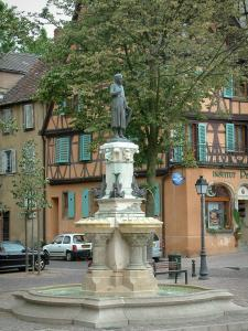 Colmar - Roesselmann fontana e case in background