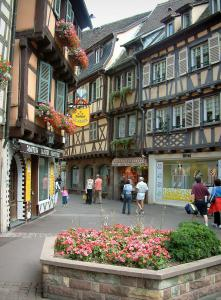 Colmar - Shopping street, timber-framed houses, shops and flowers