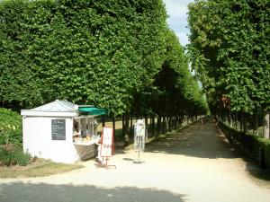 Compiègne - Park of the château with a bandstand and a long path lined with trees