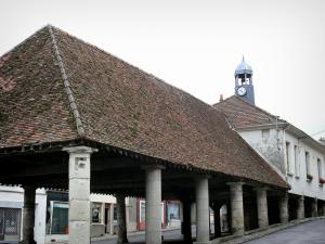 Condé-en-Brie - Covered market hall supported by Doric pillars and steeple of the old town hall