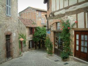 Cordes-sur-Ciel - Paved sloping street in the medieval town, pink climbing roses and timber-framed houses