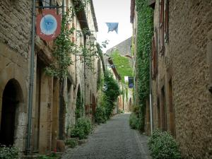 Cordes-sur-Ciel - Narrow paved street lined with stone houses and facades decorated with plants