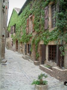 Cordes-sur-Ciel - Narrow paved street and stone houses covered with creeper