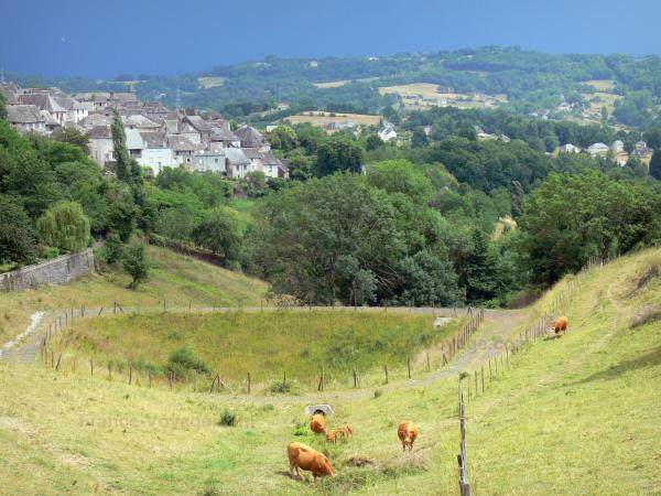 Guide of the Corrèze - Tourism, holidays & weekends in the Corrèze