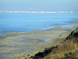 Côte Fleurie (Flower coast) - Grassland, cliffs, sandy beach and the Seine estuary