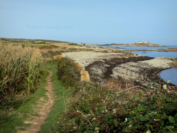 Cotentin coast - Caps road: coastal footpath, vegetation and the Channel (sea); landscape of the Cotentin peninsula