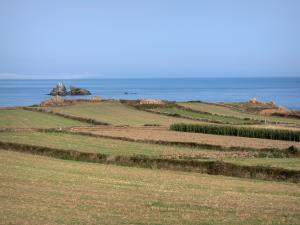 Cotentin coast - Caps road: fields with view of the Channel (sea); landscape of the Cotentin peninsula
