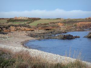 Cotentin coast - Caps road: ears, moors, small pebble beach, cliffs and the Channel (sea); landscape of the Cotentin peninsula