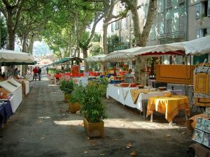 Cotignac - Gambetta cours (street) lined with plane trees, a Provençal market