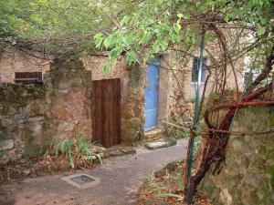Cotignac - Narrow street of the village with creepers, stone walls and a house with a blue door
