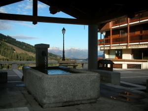 Courchevel - Fountain with a view of the ski area, trees and mountains, Courchevel 1650 ski resort (winter sports)