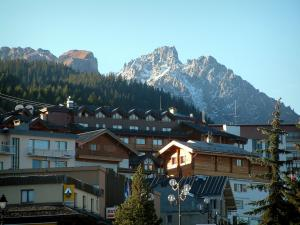 Courchevel - Residences of the ski resort (winter sports), spruces forest and mountain