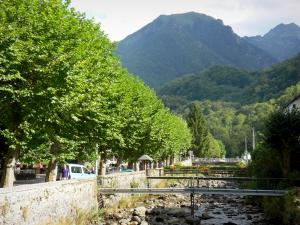 Couserans - Spa town of Aulus-les-Bains: river, trees and Upper Couserans mountains; in the Ariège Pyrenees Regional Nature Park, in the Garbet valley