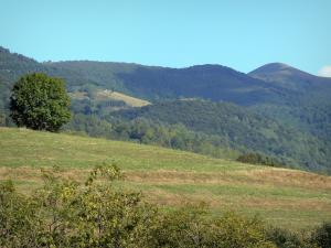 Couserans - View of the hills covered with meadows and trees; in the Ariège Pyrenees Regional Nature Park