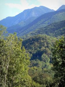 Couserans - Hills covered with trees; in the Ariège Pyrenees Regional Nature Park