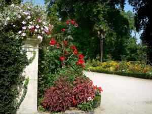 Coutances - Botanical garden: flowers, plants and trees