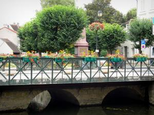 Crécy-la-Chapelle - Grand Morin valley (valley of the Grand Morin painters): bridge spanning the River Grand Morin, flowers and trees