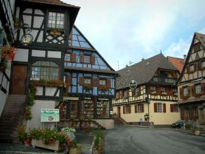 Dambach-la-Ville - Half-timbered houses, colourful facades and windows decorated with geranium flowers (geraniums)