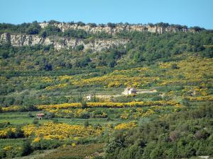 Dentelles de Montmirail - Trees, vegetation, house and rock face of the massif
