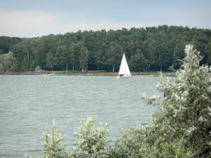 Der-Chantecoq lake - Sailboat sailing on Der lake, and wooded shore