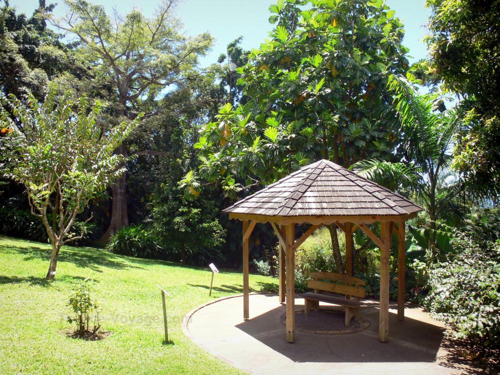 garden hut. Deshaies Botanical Garden - Hut In The Heart Of Arboretum