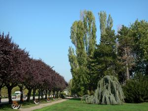 Divonne-les-Bains - Spa town: benches, lawns and trees around the lake; in the Pays de Gex